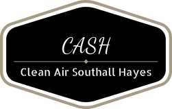Southall and Hayes Clean Air